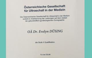 Dr. Düsing Zertifkat ÖGUM