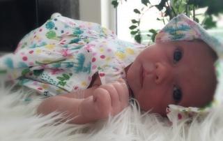 Babygalerie_IVF_DrDuesing
