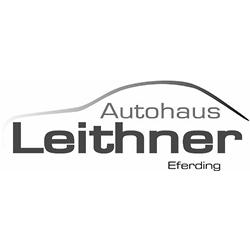 Bronze_Fiat Leithner